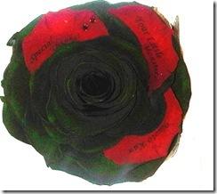 gaga-rose
